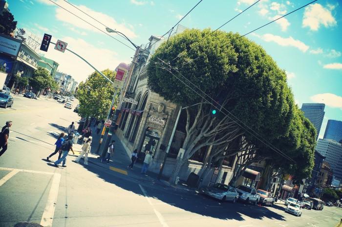 San Francisco tourist photos