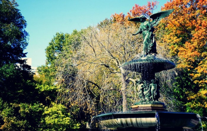 Central park autumn photo