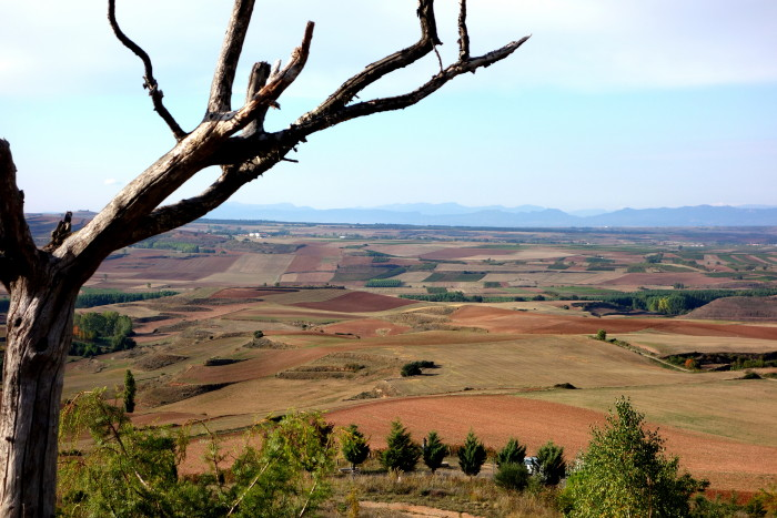 Beautiful Riojan landscape