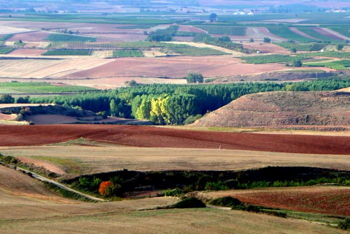 The raw beauty of Rioja