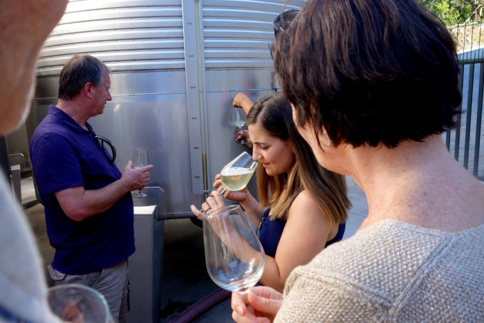 Understanding wine part-way through fermentation