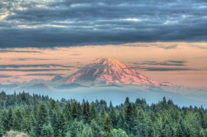 20 best couples activities in Seattle