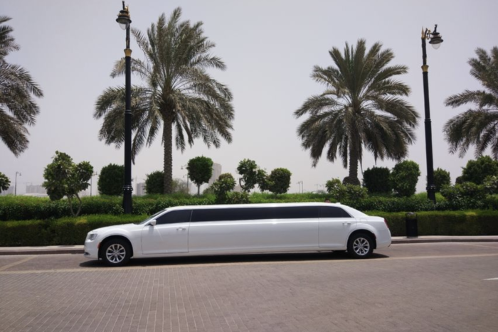 Dubai proposal package