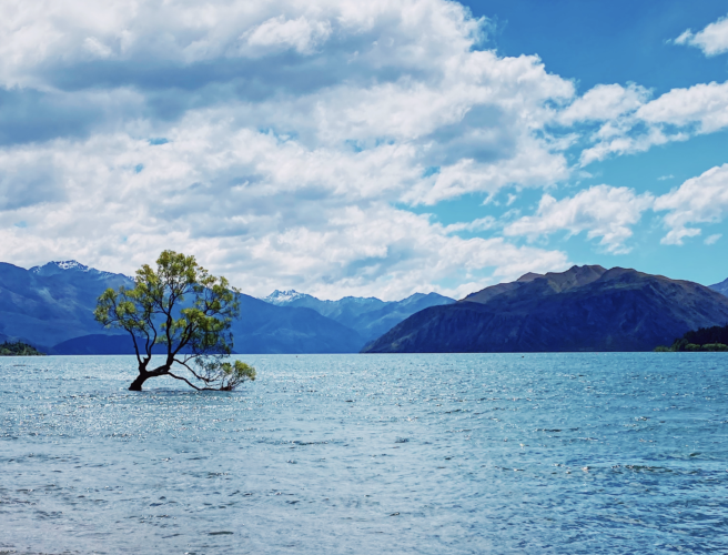 Wanaka new zealand 2020
