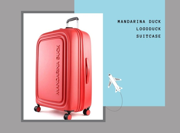 best luggage for international travel