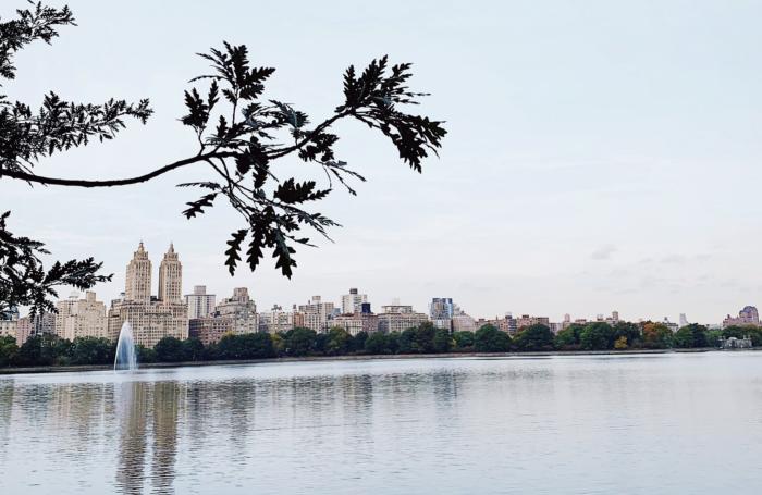 The Best Central Park Photo Spots