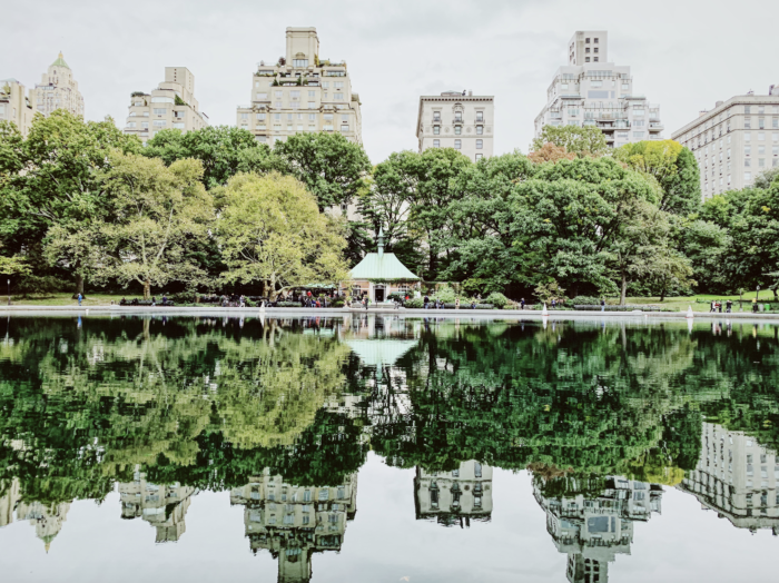 The Best Central Park Photo Spots ! !