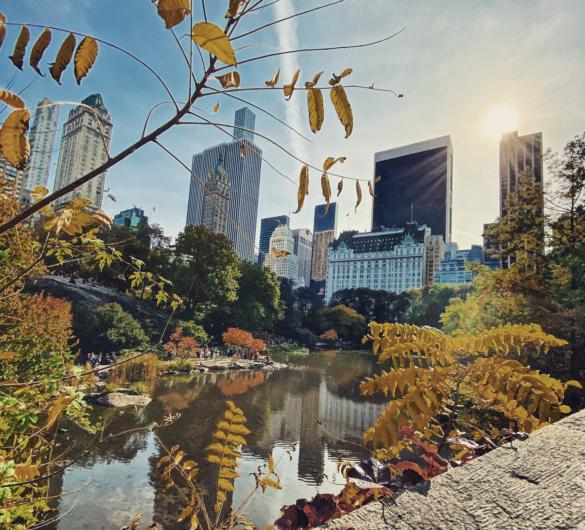 The Best Central Park Photo Spots !!!