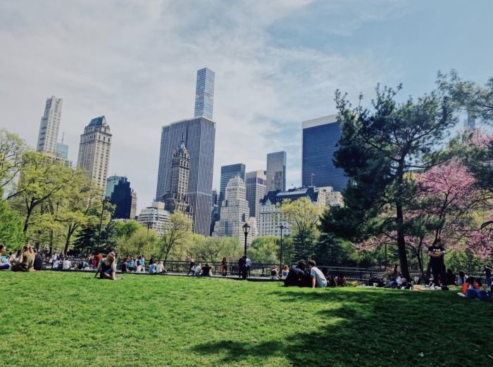 The Best Central Park Photo Spots The Best Central Park Photo Spots