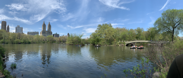 The Best Central Park Photo Spots nyc