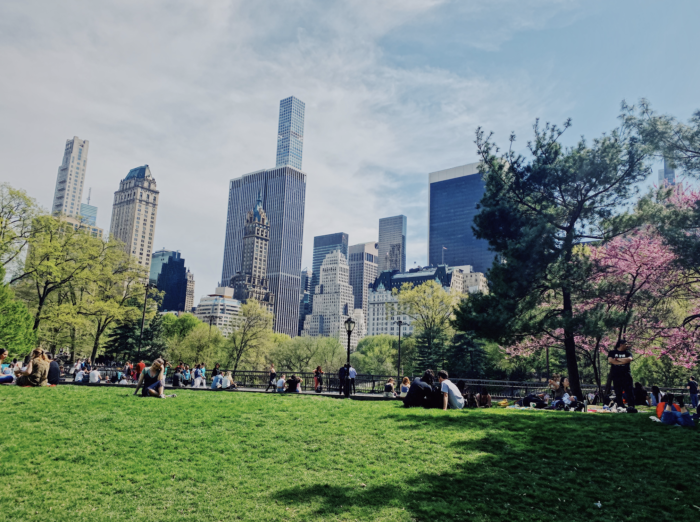 The Best Central Park tours 2