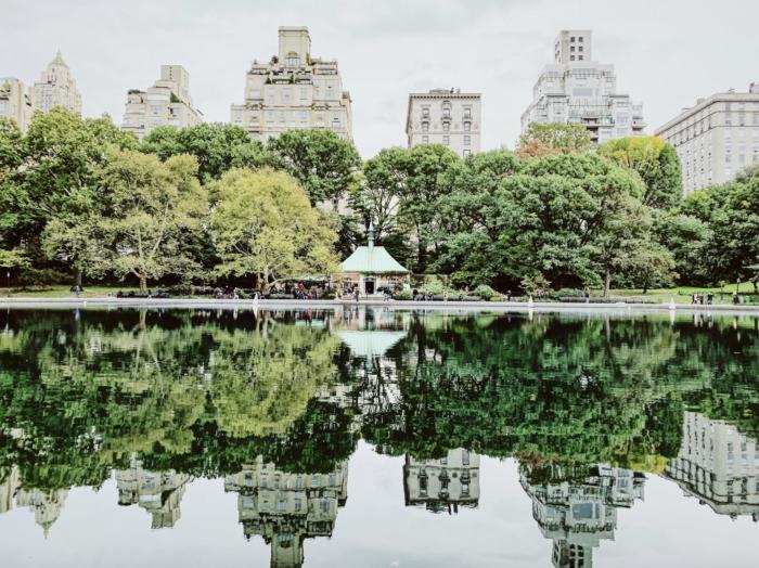 The Best Central Park tours