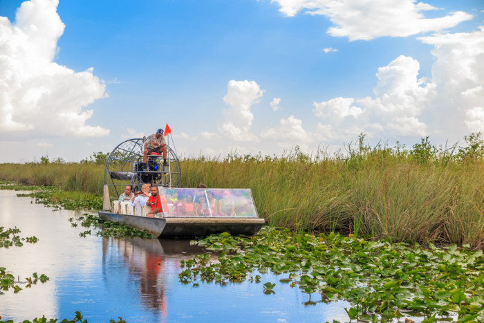 the best way to see the everglades