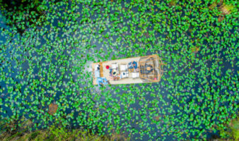 what are the best way to see the everglades