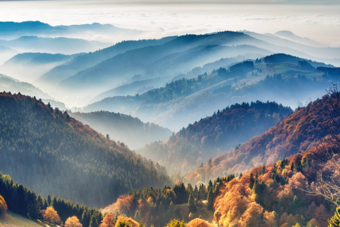 Black Forest Germany photos