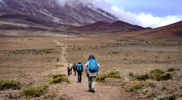 Kilimanjaro tips