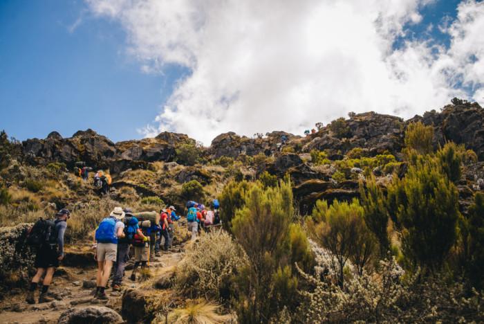 Trip To Kilimanjaro