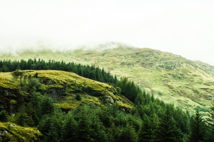 best way to see the scottish highlands in scotland