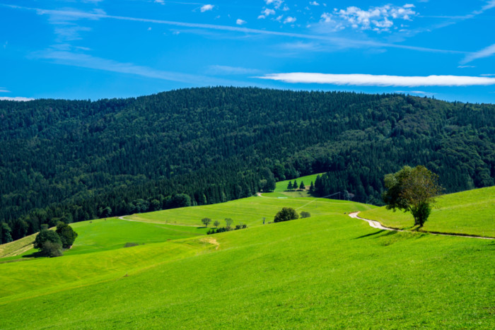 black forest germany Schauinsland 1