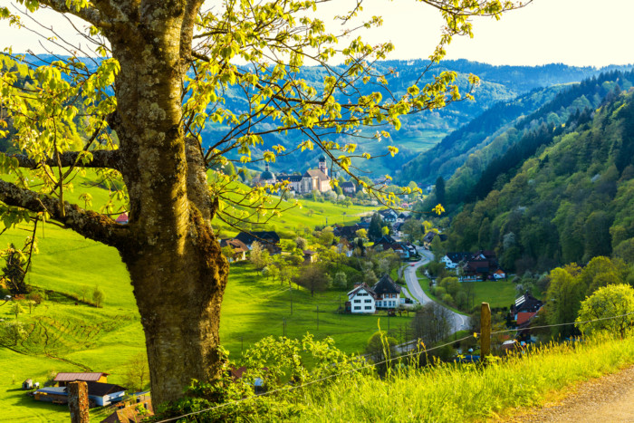 black forest high road germany