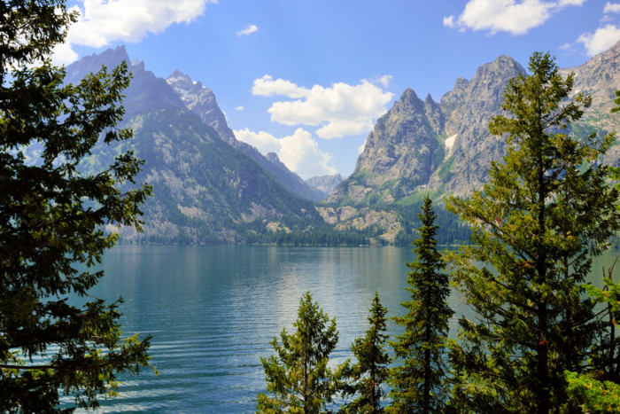 best things to do in jenny lake