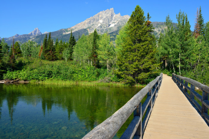 things to do in jenny lake 2
