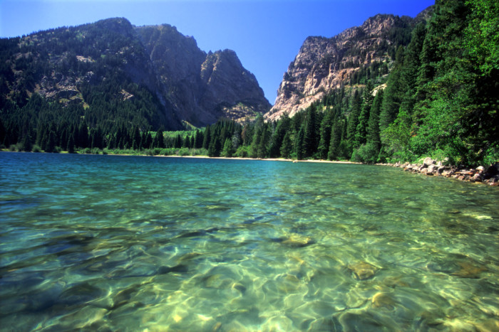 things to do in jenny lake USA
