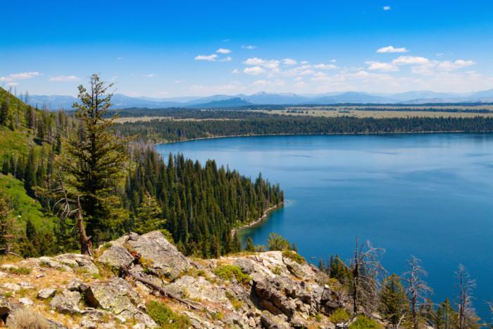 things to do in jenny lake wyoming
