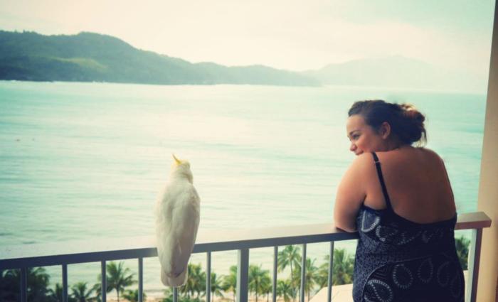 Hamilton Island birds