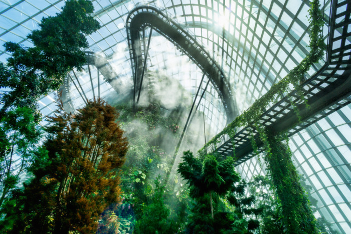 best things to do indoors in Singapore
