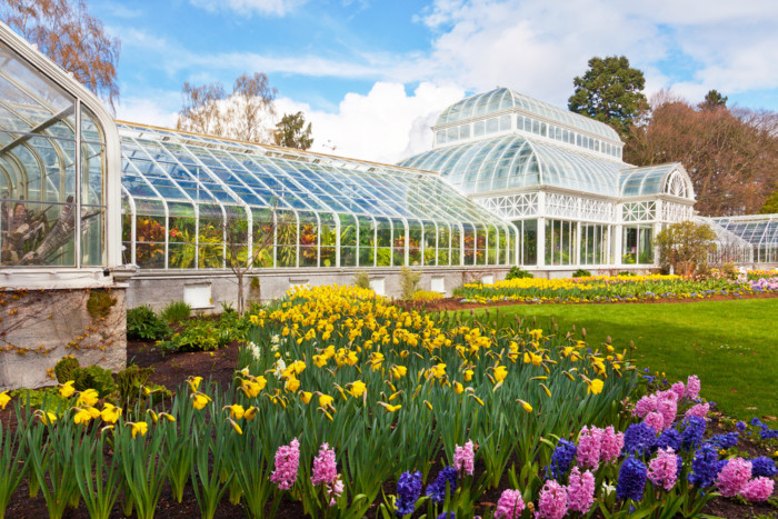 a photo of volunteer park in capitol hill seattle