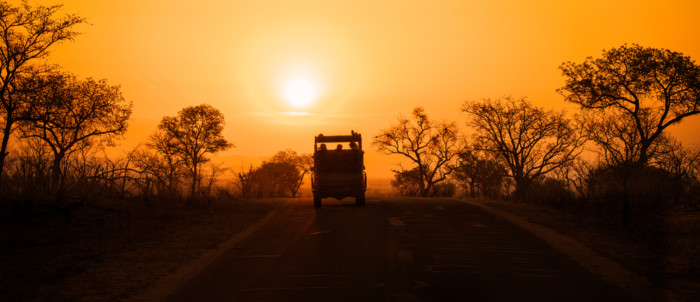 Tips for packing for a Safari