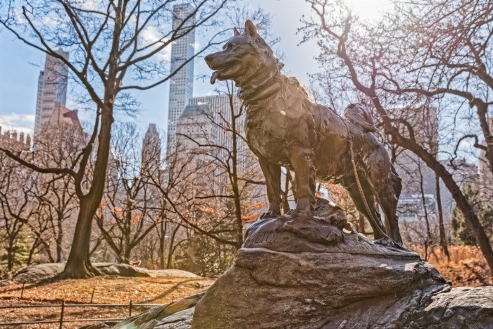 balto statue in central park nyc