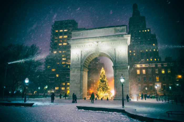 Best Christmas trees in new york