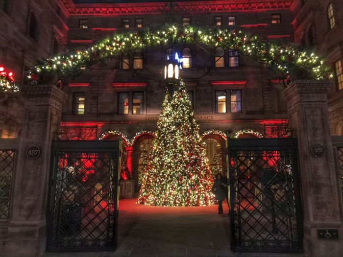 best New York Christmas trees.