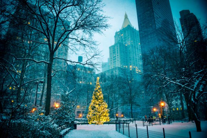 best New York Christmas trees