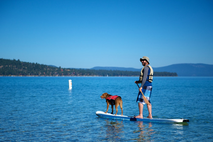 dog friendly places lake tahoe