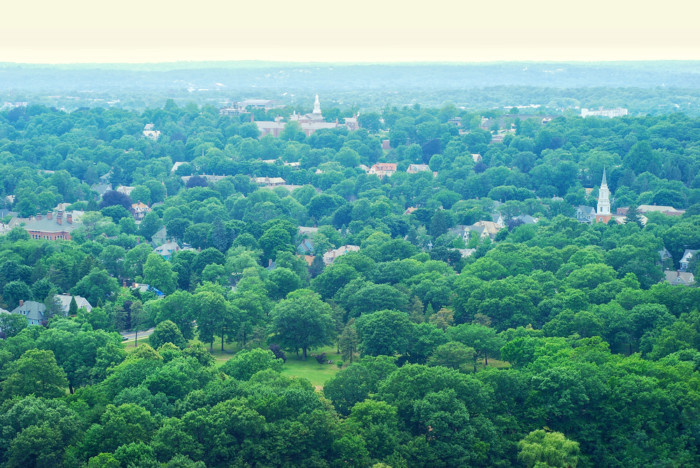 list of things to do in New Haven, Connecticut