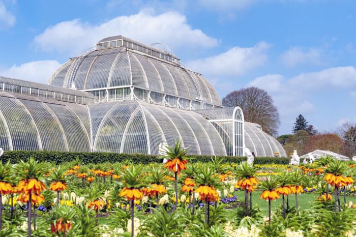 London sightseeing kew gardens