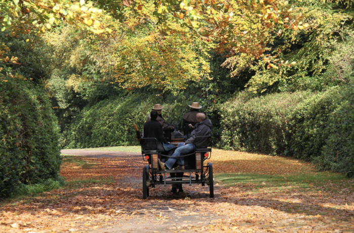 Ascot Carriages things to do in Windsor