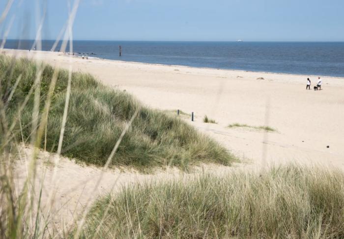 UK holiday parks near the beach