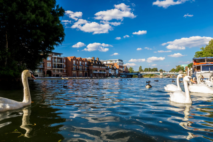 things to do in windsor