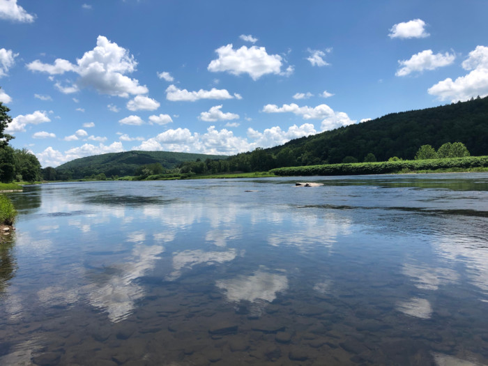 Delaware,River things to do in Callicoon NY