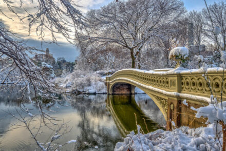 Christmas in central park