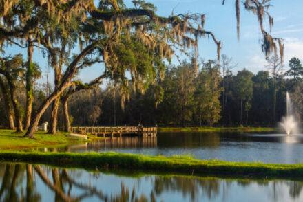 fun things to do in Brooksville