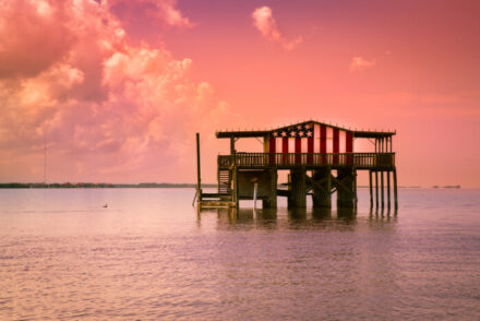 things to do in New Port Richey