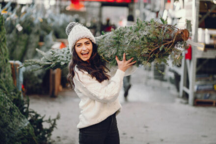 the best Christmas tree farms in California